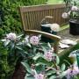 Daphne - Perfume Princess with bench - WEB